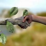 Uticaj prirode na čoveka -