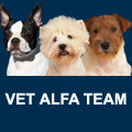 VET ALFA TEAM Salon za pse i pet shop