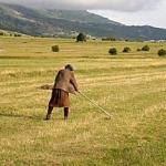 Nudio im put u EU, seljaci odbili - Nudio im put u EU, seljaci odbili