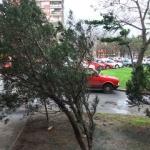 Oluja u regionu, troje povređeno - Oluja u regionu, troje povređeno