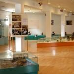 Sanacija somborskog muzeja - Sanacija somborskog muzeja