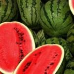 Jedite lubenicu - Jedite lubenicu