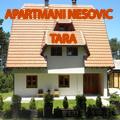 Apartmani Nešović se nalaze u samom centru Kaludjerskih Bara, na oko 500 metara od hotela Omorika i oko 100 m od restorana Jeremičak. Cetvorokrevetni i studio apartmani na Tari