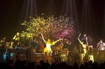 Gocoo bubnjari: Besplatni koncert - Gocoo bubnjari: Besplatni koncert