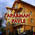 Apartman Pavle se nalazi u jednom od najlepših delova Vrnjačke Banje. Deo je apartmanskog naselja Snežnik na samo nekoliko koraka od izvora Snežnik, olimpijskog bazena, banjskog parka i šetališta.